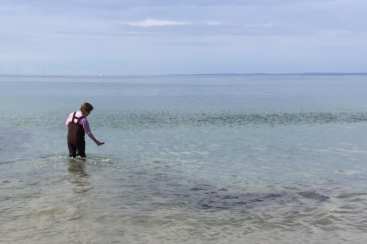 Healthy Mainie Beach water quality testing at Colony Beach