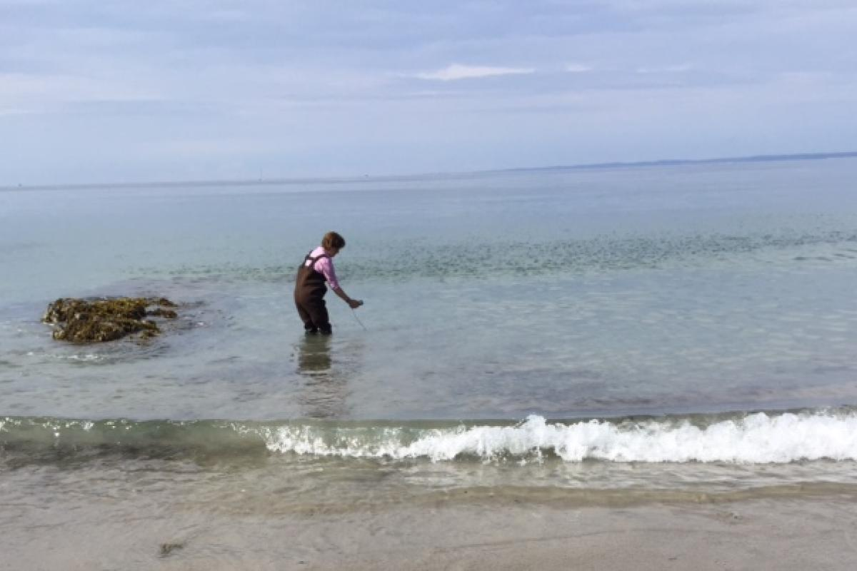 Healthy Maine Beach water quality testing at Colony Beach
