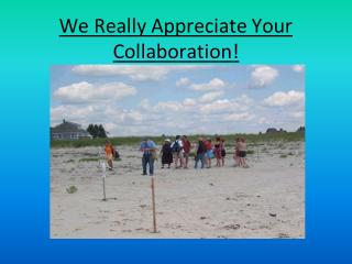 We Really Appreciate Your Collaboration!