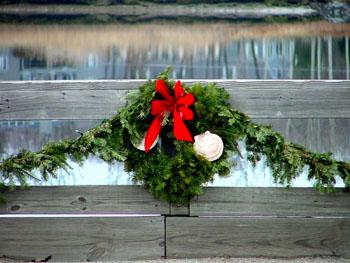 Holiday wreath with seashells